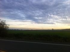 20141113-203523.jpg